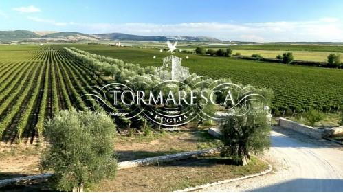 Tormaresca tasting kit